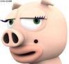 可爱小动物猪怪头像图片