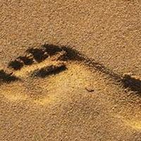 脚印脚掌痕迹头像图片9