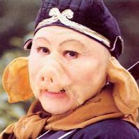 猪鼻子猪鼻孔头像图片17