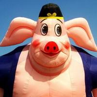 猪鼻子猪鼻孔头像图片2