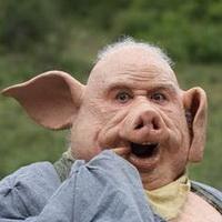 猪鼻子猪鼻孔头像图片31