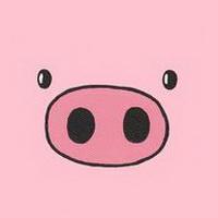猪鼻子猪鼻孔头像图片9