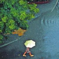 阴雨绵绵头像图片31