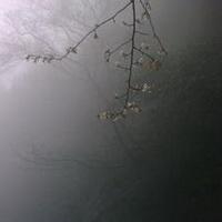 阴雨绵绵头像图片34