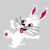 图片兔子表情_兔子头像qq卡通卡通_可爱萌扣奸笑微信头像包图片