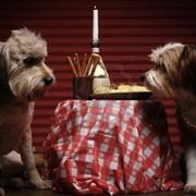 情侣烛光晚餐头像图片4