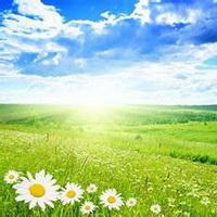 春暖花开唯美头像图片40