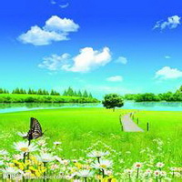 春暖花开唯美头像图片42