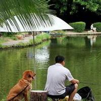 唯美钓鱼湖边头像图片11