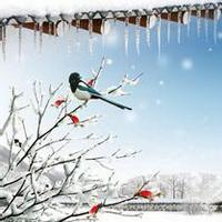 唯美冬天风景