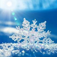 冬天唯美风景雪花头像图片2