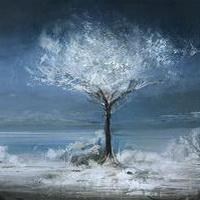 冬天唯美风景雪花头像图片25