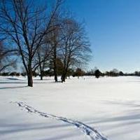 冬天唯美风景雪花头像图片3