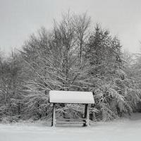 冬天唯美风景雪花头像图片34