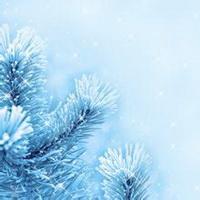 冬天唯美风景雪花头像图片39