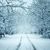 冬天唯美风景雪花头像图片41