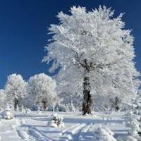 冬天唯美风景雪花头像图片44