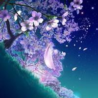 唯美星空夜空头像图片2